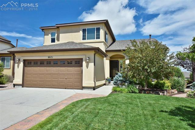 9971 Everglades Drive, Peyton, CO 80831 (#6925219) :: The Treasure Davis Team