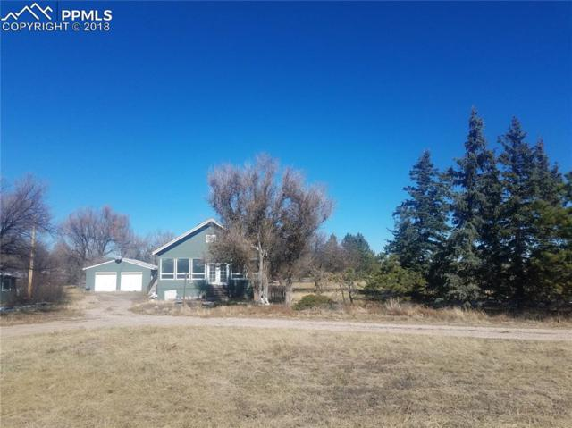 4520 E Blaney Road, Peyton, CO 80831 (#6925766) :: Jason Daniels & Associates at RE/MAX Millennium