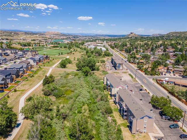 1175 S Gilbert Street, Castle Rock, CO 80104 (#6927194) :: Tommy Daly Home Team