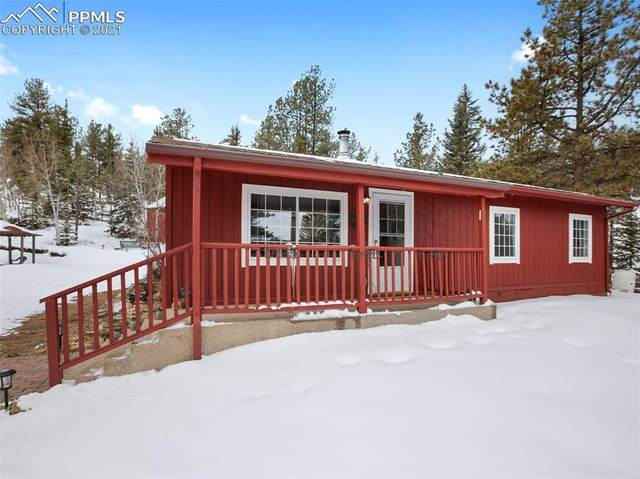 875 Obsidian Drive, Florissant, CO 80816 (#6928486) :: Fisk Team, RE/MAX Properties, Inc.