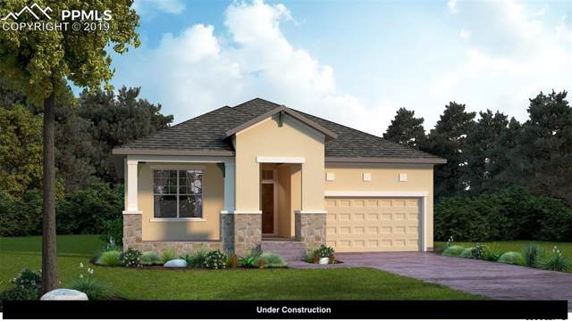 6553 Courtland Place, Colorado Springs, CO 80924 (#6929353) :: 8z Real Estate