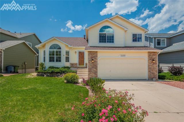 1155 Dream Lake Court, Colorado Springs, CO 80921 (#6947003) :: Action Team Realty
