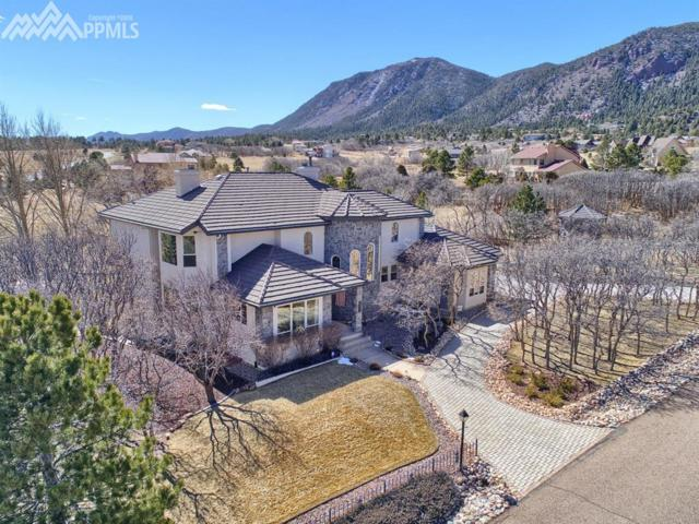765 Forest View Circle, Monument, CO 80132 (#6947888) :: RE/MAX Advantage
