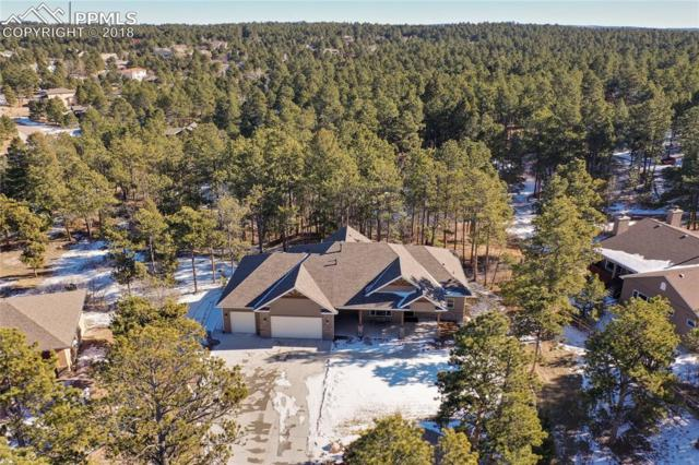 1232 Greenland Forest Drive, Monument, CO 80132 (#6951063) :: Venterra Real Estate LLC