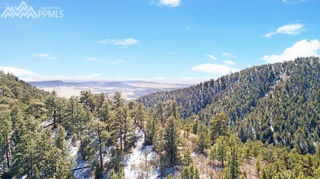 Big Spruce Heights, Colorado Springs, CO 80926 (#6951121) :: 8z Real Estate