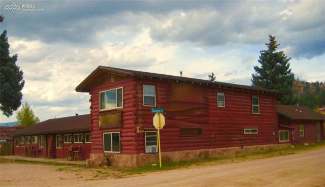 38283 Highway 24 Highway, Lake George, CO 80827 (#6953615) :: 8z Real Estate