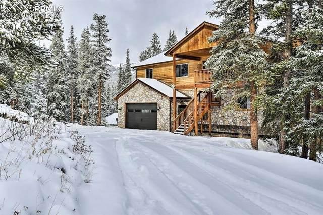 155 Ute Trail, Alma, CO 80420 (#6953950) :: Fisk Team, RE/MAX Properties, Inc.