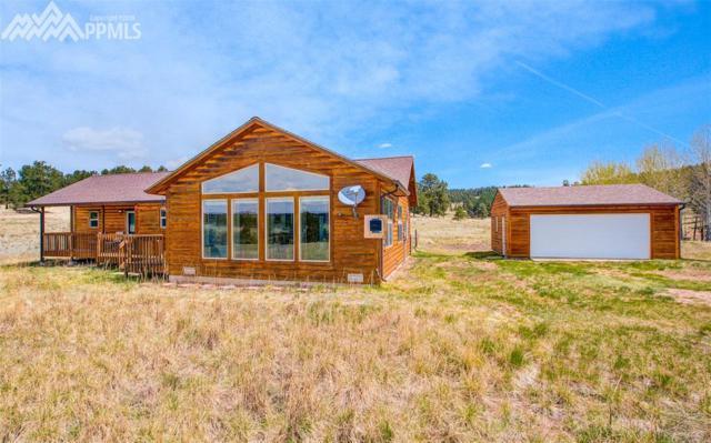 243 High Pasture Road, Florissant, CO 80816 (#6957048) :: 8z Real Estate