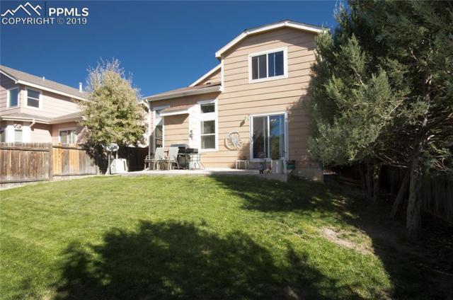 8226 Wilmington Drive, Colorado Springs, CO 80920 (#6960676) :: Venterra Real Estate LLC