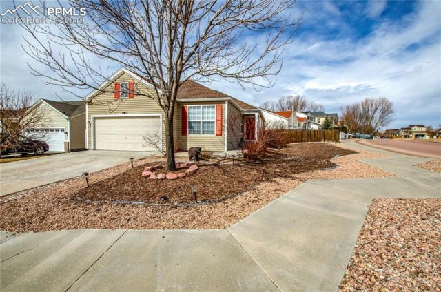 8402 Snowdrop Court, Fountain, CO 80817 (#6966154) :: Action Team Realty