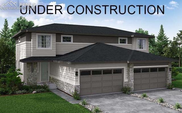 8919 Birch Run Lane, Parker, CO 80134 (#6967563) :: Venterra Real Estate LLC
