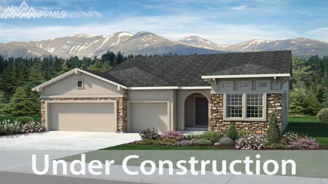 5595 Thurber Drive, Colorado Springs, CO 80924 (#6972048) :: Jason Daniels & Associates at RE/MAX Millennium
