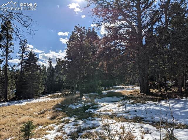 1587 Chalice Drive, Westcliffe, CO 81252 (#6973538) :: Venterra Real Estate LLC