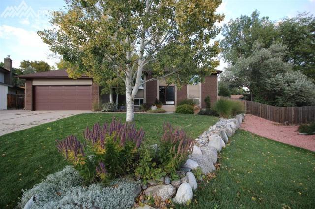 2745 Alteza Lane, Colorado Springs, CO 80917 (#6974996) :: 8z Real Estate