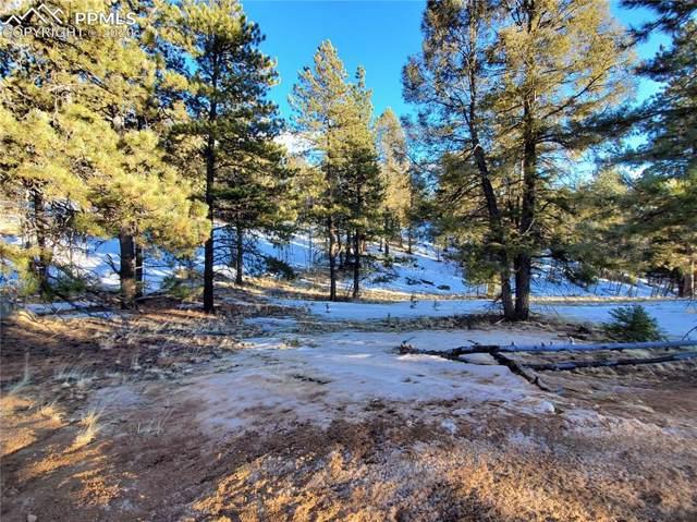 36 Garnet Way, Florissant, CO 80816 (#6975261) :: Compass Colorado Realty