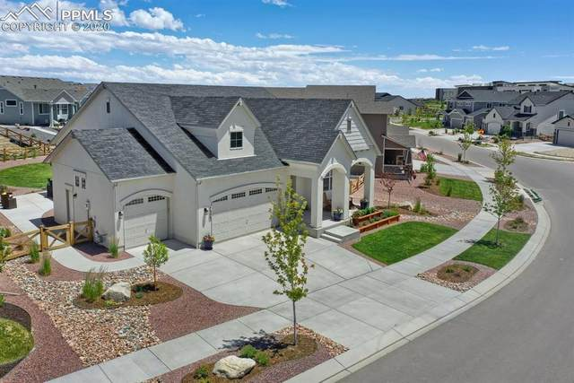 7353 Rim Bluff Lane, Colorado Springs, CO 80927 (#6978593) :: Tommy Daly Home Team