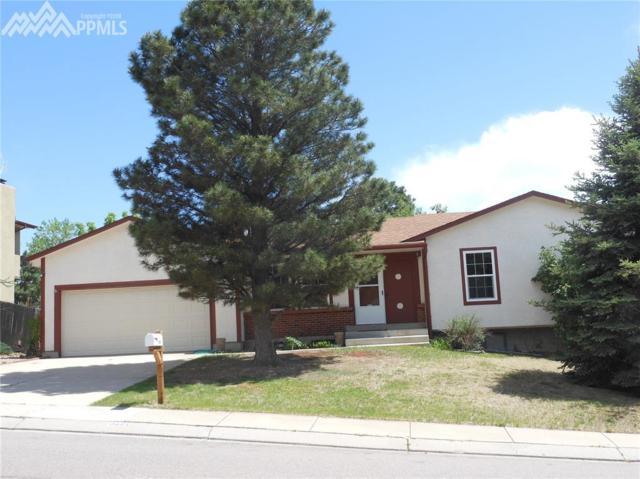 2861 Buttermilk Circle, Colorado Springs, CO 80918 (#6978663) :: Fisk Team, RE/MAX Properties, Inc.