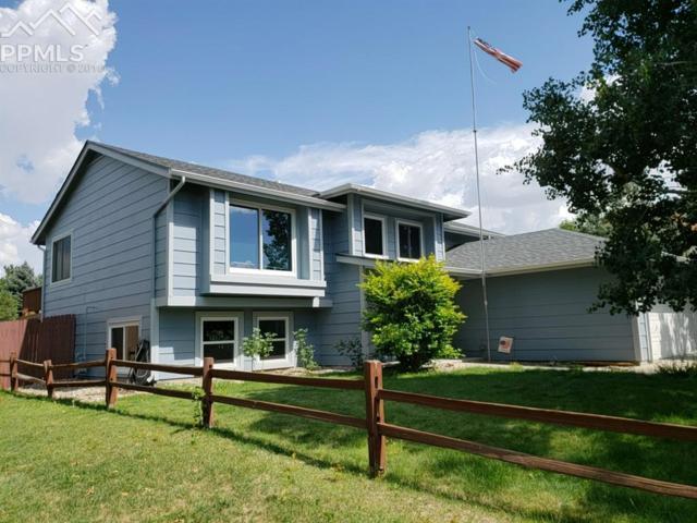 4525 Isabella Place, Colorado Springs, CO 80922 (#6979273) :: The Treasure Davis Team