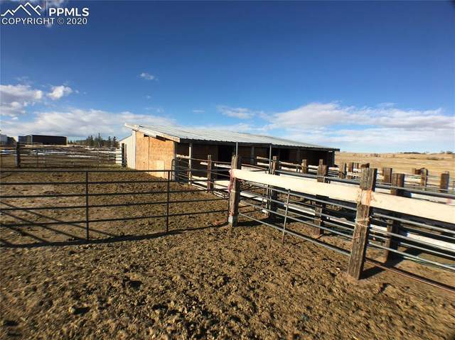 15550 Coyote Haven View, Peyton, CO 80831 (#6979434) :: The Harling Team @ HomeSmart