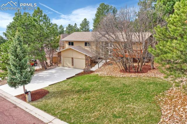 6950 Blackhawk Place, Colorado Springs, CO 80919 (#6980880) :: Tommy Daly Home Team