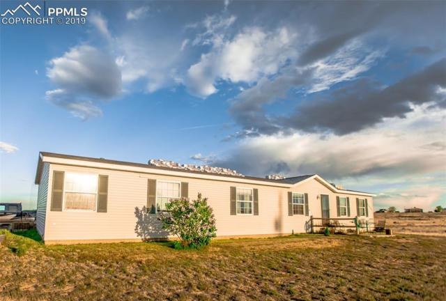 21435 La Piedra Point, Pueblo, CO 81008 (#6980919) :: Action Team Realty