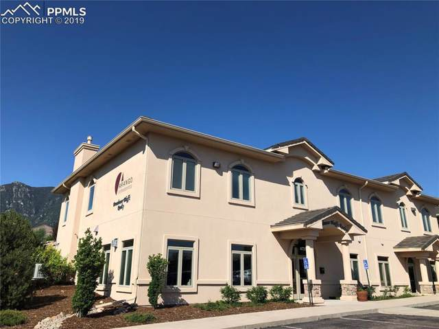 4729 Opus Drive B, Colorado Springs, CO 80906 (#6982229) :: Perfect Properties powered by HomeTrackR