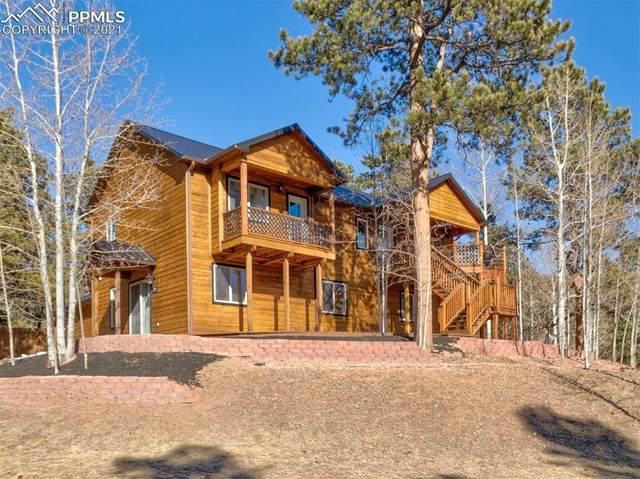 310 Panther Court, Woodland Park, CO 80863 (#6986015) :: Fisk Team, RE/MAX Properties, Inc.