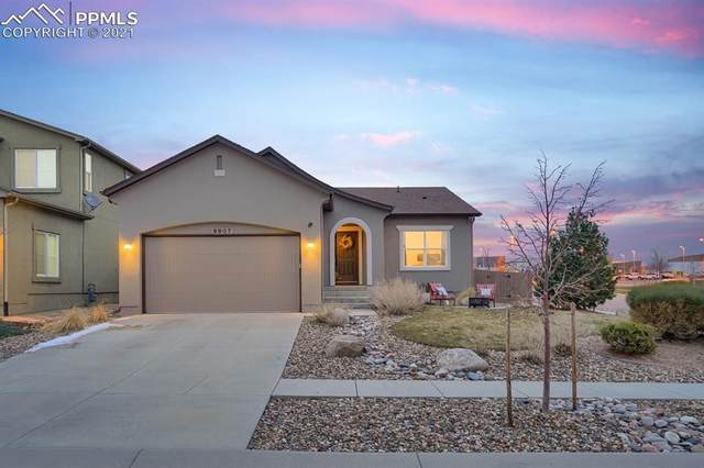 9907 Paonia Park Place, Colorado Springs, CO 80924 (#6987018) :: The Cutting Edge, Realtors