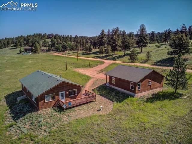 1823 S Mountain Estates Road, Florissant, CO 80816 (#6987365) :: Compass Colorado Realty