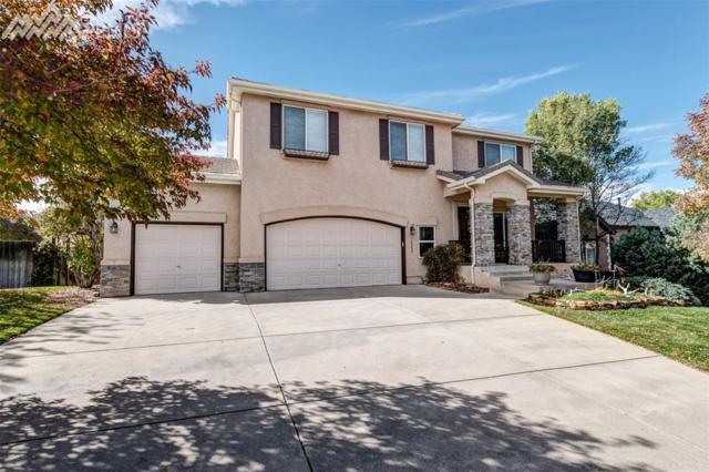5942 Treeledge Drive, Colorado Springs, CO 80918 (#6988262) :: 8z Real Estate