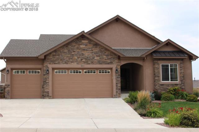 971 Fire Rock Place, Colorado Springs, CO 80921 (#6989623) :: The Treasure Davis Team