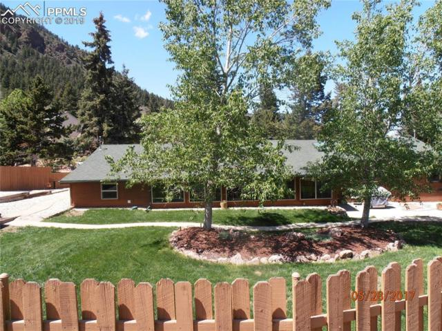 351 Eisenhower Drive, Palmer Lake, CO 80133 (#6995608) :: Fisk Team, RE/MAX Properties, Inc.