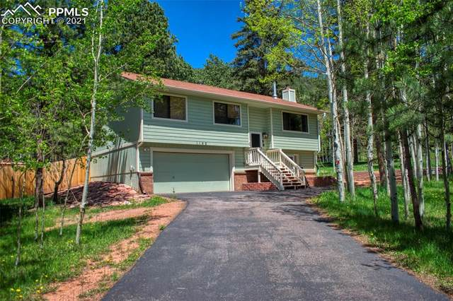 1150 Park View Road, Woodland Park, CO 80863 (#6996837) :: Dream Big Home Team | Keller Williams