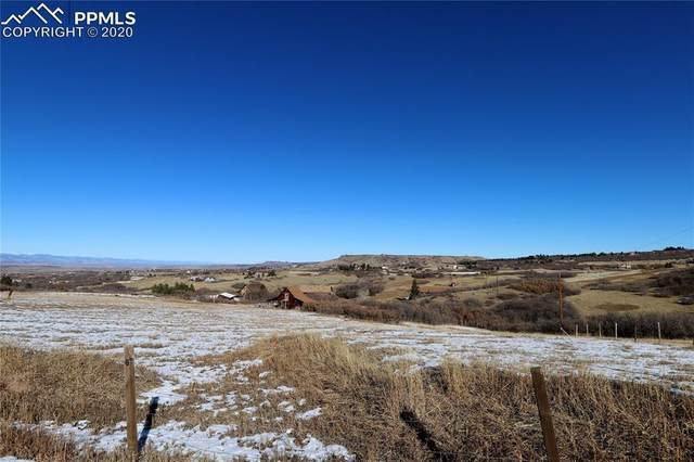 1551 Peak View Drive, Castle Rock, CO 80109 (#6997685) :: Finch & Gable Real Estate Co.