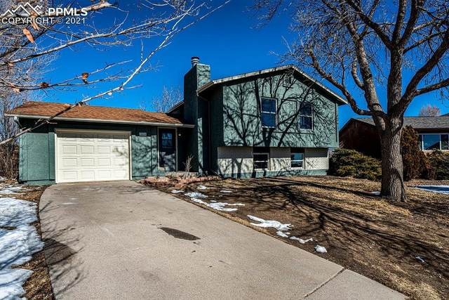 Colorado Springs, CO 80911 :: Realty ONE Group Five Star