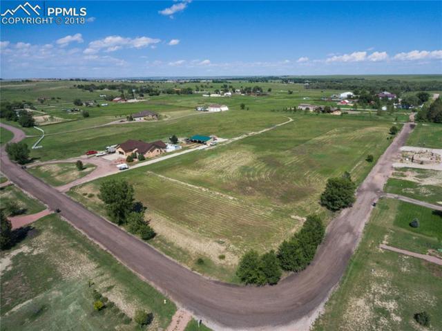 8689 Valley Ranch Point, Fountain, CO 80817 (#7002435) :: Jason Daniels & Associates at RE/MAX Millennium