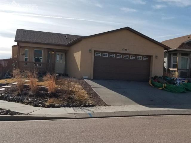 8389 Freestar Way, Colorado Springs, CO 80925 (#7002444) :: 8z Real Estate