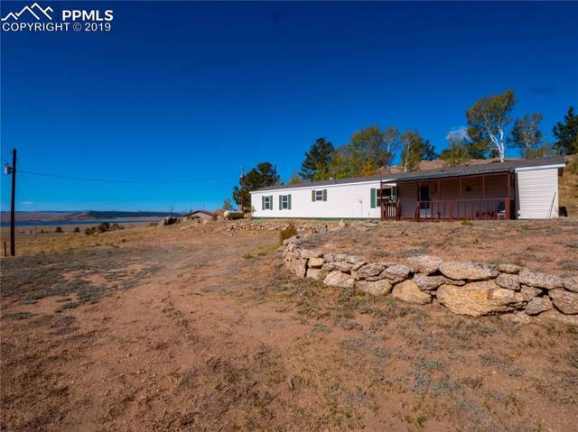 123 Emerald Way, Lake George, CO 80827 (#7004737) :: Perfect Properties powered by HomeTrackR