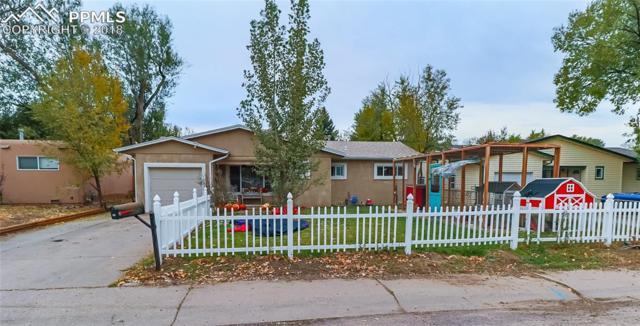 137 Steven Drive, Colorado Springs, CO 80911 (#7005904) :: Venterra Real Estate LLC