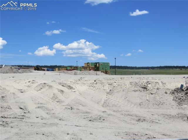 9737 Wolf Lake Drive, Colorado Springs, CO 80924 (#7011451) :: 8z Real Estate