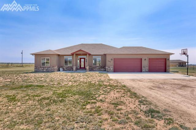 10935 Mckissick Road, Peyton, CO 80831 (#7012577) :: The Peak Properties Group
