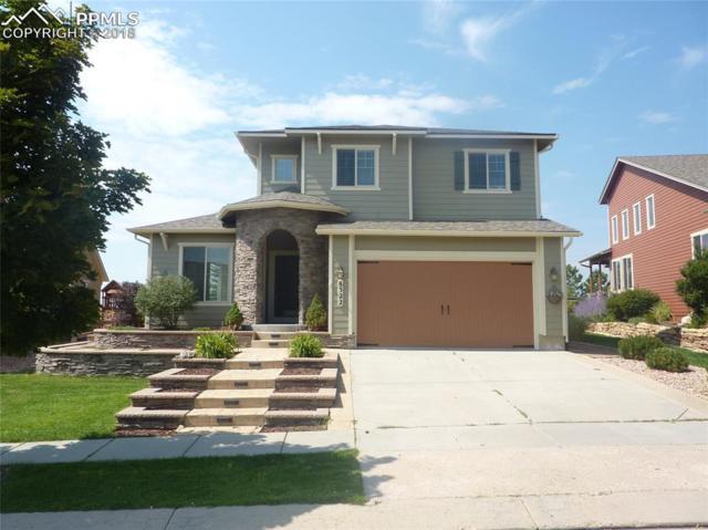 8322 James Creek Drive, Colorado Springs, CO 80924 (#7016065) :: Harling Real Estate