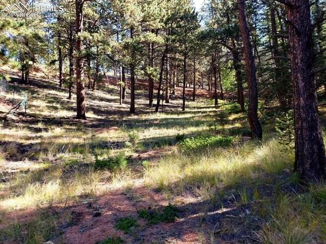 134 Spring Valley Circle, Divide, CO 80814 (#7016986) :: Symbio Denver