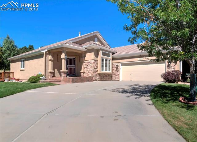 1624 Barefoot Heights, Colorado Springs, CO 80919 (#7016987) :: The Treasure Davis Team