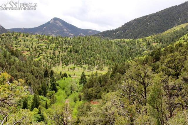 000 Trestle Trail, Manitou Springs, CO 80829 (#7024150) :: Tommy Daly Home Team