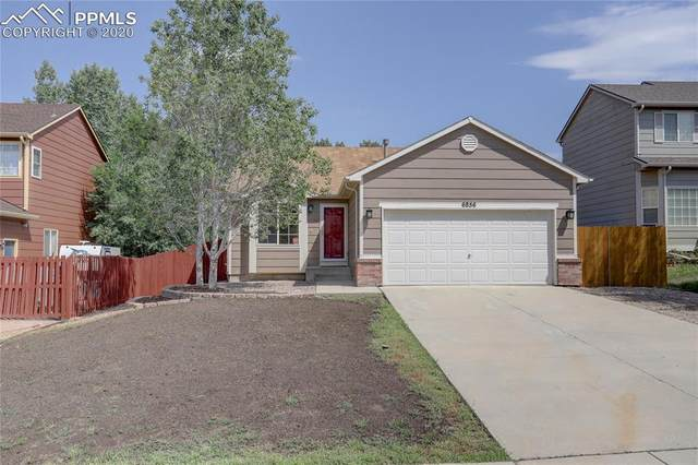 6856 Ketchum Drive, Colorado Springs, CO 80911 (#7032078) :: Tommy Daly Home Team