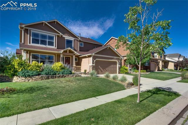 5627 Calvert Creek Drive, Colorado Springs, CO 80924 (#7033268) :: CC Signature Group