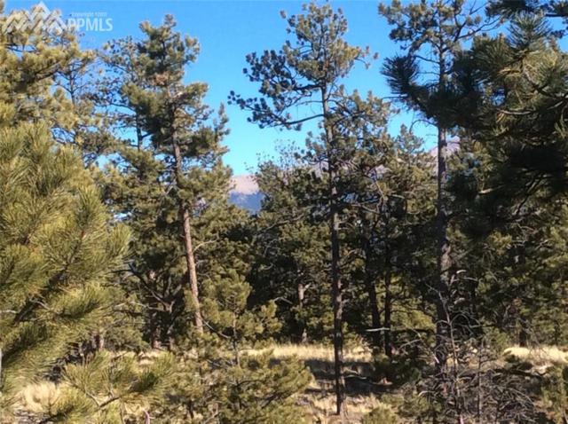 101 Black Mesa Circle, Florissant, CO 80816 (#7037253) :: CENTURY 21 Curbow Realty