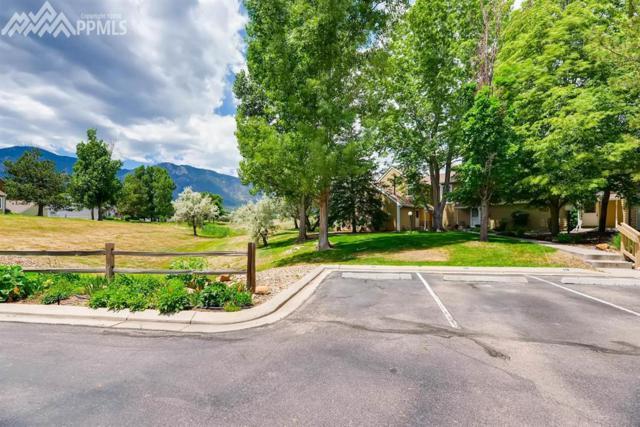 332 Cobblestone Drive, Colorado Springs, CO 80906 (#7037609) :: The Treasure Davis Team