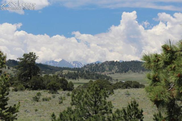 20 Dilley Circle, Westcliffe, CO 81252 (#7038086) :: Action Team Realty